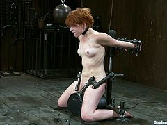 A sybian is going to be the device used to force the short-redhead Juliette March to reach an orgasm in this BDSM vid.