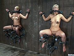 These two blondes are placed in some special bondage devices where they are sort of sitting and toyed without being able to resist the pleasure coming from the vibrators.