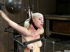 Bondage and torture for blonde forced to ride sybian in BDSM video