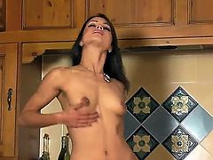 Leggy longhaired brunette sex bomb Chelsea French stays in high heeled black shoes only. She starts touching her sweet clean shaved pink pussy right before camera then.