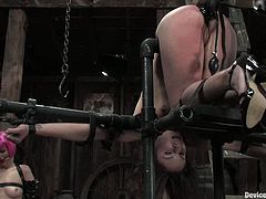 Two kinky bitches get bonded and toyed in their wet pussies. Later on they get their pussies drilled with fucking machines.