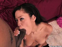 Jayla Starr gets her dripping wet cunt slam fucked in interracial porn action