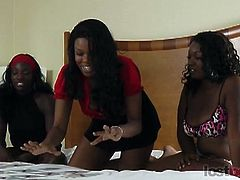 If you like watching beautiful girls playing and losing strip games, you'll love what we have to offer. Lost Bets Games is an all exclusive site featuring gorgeous babes in the most erotic of games ever, where the loser (or losers) end up paying back a bet in the sexiest possible ways.This episode is about three hot thick ass ebony babe, Amani, Tiana and Alicia.Enjoy!!!