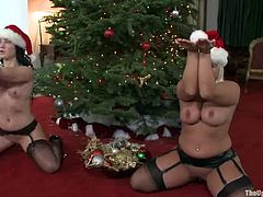 Amazingly hot chicks in stockings and Christmas hats decorate the tree. Later on they get tied up and fucked rough by two guys.