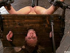 A pillory is used in a kinky way in this bondage and domination video where a blonde has her pussy toyed severely without being able to resist the pleasure.