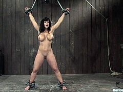 The MILF with huge tits and fame all over the world Lisa Ann is having her boobies tortured and her pussy toyed in a bondage session!