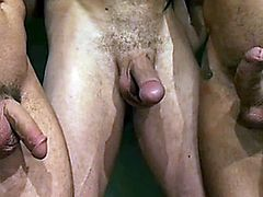 Dardos, group gay fuck and hot cumshots