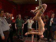 Cute brunette fucked hard in bondage scene
