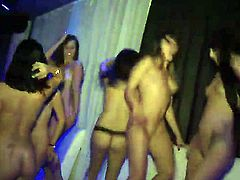 Two horney babes satisfy their love for huge dicks as they fuck hard in a group sex in a club