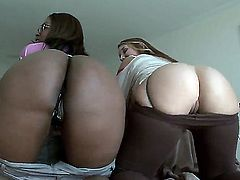 If youre into asses of all varieties, then this Ass Parade clip will do it for you. I mean, both of these curvy hotties(one black, the other white), have exquisite rear-ends.