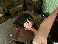 Gorgeous tattooed brunette Gia Dimarco lets horny stud Maestro chain her. Then Maestro fucks Gia's mouth and also pokes his dick into the cutie's coochie.