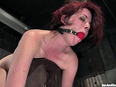 This amazing siren is being inflicted to the pain and some sexual feelings. She gets tied up and her legs are spread wide for that huge cock of her master Steve Holmes!
