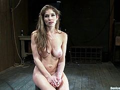 A whore gets nipple clamps on her tits while she's mounted on a cock shaped dido that vibrates while she's fixed to the wall!