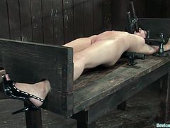 A fucking brunette fucking bitch gets slaved and toyed with in this kinky bondage scene right here, check it out! It's totally free!