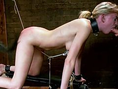 blonde sucks cock while she gets whipped