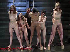Five girls are forced to get buck naked in camera. They're tied up, punished and humiliated. Girls open their legs and ride the sybian, wanna see?