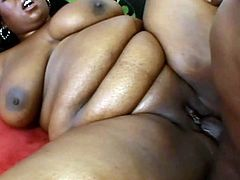 Fat whore Daphne Daniels knows how to treat a big black cock. She sucks it diligently like a dirty whore and then she fucks in missionary position. Since that prick is already hard she jumps on top of it and rides it in cowgirl position.