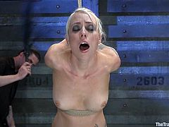 Adorable blonde Lorelei Lee lets some guy bind her in a basement. Then the dude takes a vibrator and begins to rub it against Lorelei's sweet pussy.