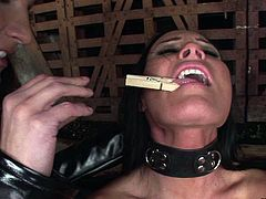 Tasty looking brunette hottie moans with pain as a pitiless domina in latex costume pins her body with clothes pegs as she sits in front of her with leg and hands cuffed in BDSM-styled lesbian sex video by 21 Sextury.