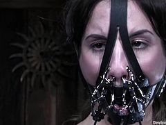 Kinky brunette chick gets chained and then suspended. After that she gets her ass and pussy stuffed with black dildo.