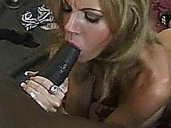 Amber Michaels gives a hot interracial blowjob to one lucky BBC.