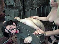 The blonde in corset is no other than Lorelei Lee and she's spanking and torturing a guy in a pillory in this femdom BDSM vid.