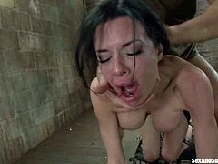 Amazing brunette girl in stockings gets her tits liked and tortured with claws. Later on she gets tied up and fucked in her juicy vagina.
