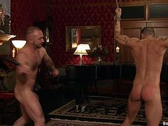 Adam Knox and Josh West are having fun in a basement. The dominator binds his friend, pleases him with ass fingering and then fucks his butt deep and hard.