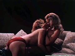 Watch two vintage lesbos as they munch their tight pink cunts in this awesome video. They hot blonde and the nasty brunette wanna misbehave old school style.