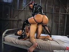 Lesbian BDSM porn videos are so pleasant to watch. Two horny chicks Sandra Romain and Veornica Lynn are here to show their fetish fantasies!