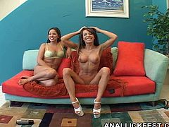 Two mesmerizing brunette harlows make out with an insatiable bald dude. They mouth fuck his strain dick in turns before giving him a rimjob in sizzling hot threesome sex orgy by Pornstar.