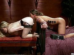 Hot brown-haired chick gets undressed and tied up by her blonde mistress. Later on she gets toyed hard and tortured with electricity.