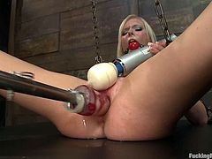 Adorable blonde Elaina Raye is having fun in a basement. She caresses her body passionately and then gets her pussy drilled by a fucking machine.