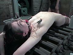 Amie is getting naughty with Isis Love in a cellar. Isis binds the brunette and smashes her nice pussy with a dildo till the chick cums.