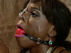 Sexy ebony girl gets gagged and tied up by a girl. Later on Ana gets her ass and pussy toyed with different devices.