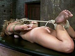 This desirable and petite honey Mae Meyers is getting tortured pretty hard. She is forced to blow that cock and then gets a reward of a tight hogtie and suspension.