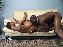 Kinky black chick presented in Pornstar sex clip is surely worth checking out. Kinky black nympho with huge ass gets her cooch hammered tough on the small couch and gets cumshot onto her super nice rounded butt right away.