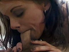 See how two dudes and a sexy brunette play bisexual games. They suck and fuck every single hole available to make the most of their perverse bisexual cravings.