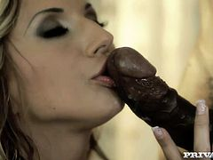 A big black cock and a white penis are going to make the day to Joanne Sweet in this interracial anal threesome.