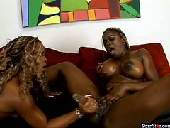 Two jaw dropping ebony babes try to satisfy each others lust. One spreads her legs wide open and gets her black pussy dildo fucked hard.