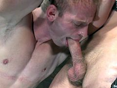 Adam Herst and Patrick Rouge are having fun in a basement. Patrick binds Adam and then pleases him with a blowjob and a rimjob.