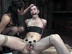 Poor guy gets tied up and tortured his dick with electricity. After that he gets his ass stuffed with a strap-on. Then she rides his cock.