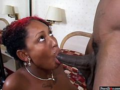 Spoiled black doxy with red stripe on her head lies on the bed fingering her bald vagina with manicured fingers before she goes down on her knees to give blowjob to aroused black penis in steamy sex video by Pornstar.
