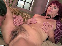 Dirty-minded mature brunette gets her old hairy cunt fucked missionary