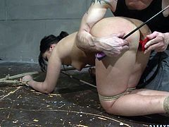 Fapalitious brunette slut stands in doggy pose with legs and hands bandaged while a perverse master strokes her body with spiked metal roller and later stuffs her anus with a plug in BDSM-involved sex video by 21 Sextury.