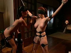 Gorgeous busty brunette Gia Dimarco is having fun with Iona Grace in a basement. She ties Iona up, attaches electric wires to her body and then smashes her vag with a strapon from behind.