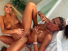 Clara G and Black Diamond are two hot blooded naked lesbian babes that have a nice time playing together in the bathroom. They enjoy fisting and then passionate blonde Clara G makes herself squirt.