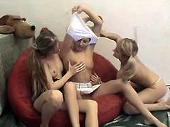 These three blonde babes love to fool around naked. They kiss each other on the lips and on their pussy lips.