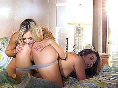 Bedtime Stories - Dani Daniels & Sophia Knight, hot lesbian couple