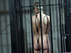 Sex hungry jailer abuses a slender blond imprisoned prostitute to steamy fuck. He pins her naked body with clothing pegs and later forces her give him a head through metal bars.
